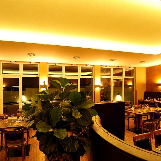 https://villa-weisse.de/wp-content/uploads/2016/10/restaurant12-540x540.jpg